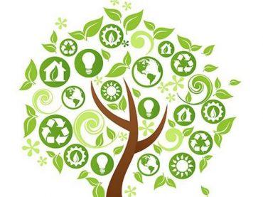 Mentana. Primo Ecofestival: salute, ambiente e sostenibilità