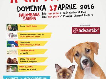 """Palombara Sabina.  Tour 2016 della Manifestazione """"Animale… a Chi???"""""""