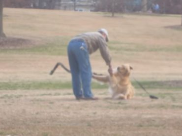 Cane non vuole andare via dal parco e si finge morto