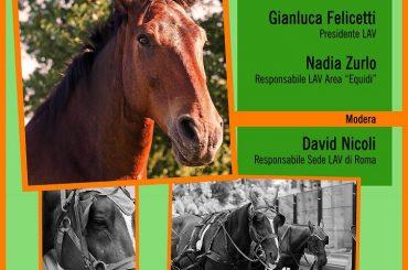 """Conferenza LAV Roma """"Il Cavallo: macchina o animale?"""""""