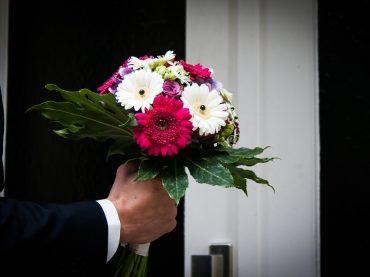 I fiori più adatti per chiedere scusa