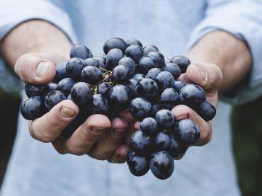 Mentana. 62esima Festa dell'Uva e dell'Agricoltura