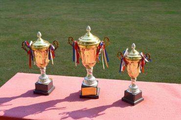 Come scegliere il trofeo per una cerimonia di premiazione
