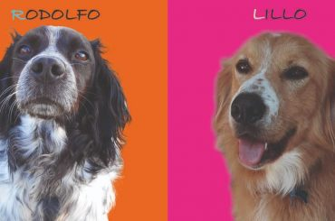 #I DOG YOU al Giffoni Film Festival