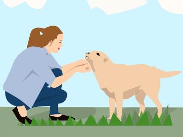 Il Cerca Famiglia – animali in adozione #1