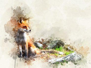 """La Kitsune: dal folclore giapponese storia e leggenda dello """"spirito della volpe"""""""